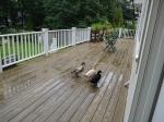 ducksdeck