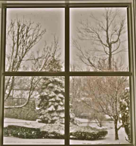 WindowVue