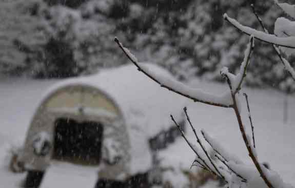 SnowCoop